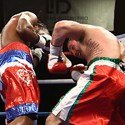 Cruiserweight boxing pro Alex Guerrero of Salisbury, Md (LEFT) in action during champs at the chase against Cruiserweight boxing pro Tony Ferrante Friday, Nov 21, 2014 at The Case Center on The River Front in Wilmington, Del.