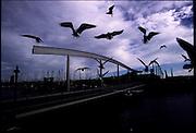©Stefano Meluni.20-12-2004 Barcelona Spain.City overview of Barcelona.nella foto: Barceloneta seaport