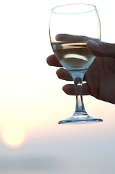 hand holding a glass of white wine