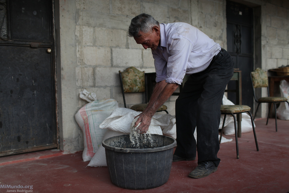 Clodoveo Rodriguez, 78, resident of San Rafael Las Flores, Guatemala, who refuses to sell his land to Tahoe Resources' El Escobal, or San Rafael, silver mine, prepares to feed his dozen cows. As all his neighbors have sold their parcels, Mr. Rodriguez' land plot is now completely surrounded by the mine and enclosed by a chain-link fenced raised by the US-Canadian mining company. The San Rafael Mine, 60% owned by US-based Tahoe Resources and 40% by Canadian mining giant Goldcorp, has been operating since 2011 without having previously consulted the local residents - a violation to numerous international conventions. San Rafael Las Flores, Santa Rosa, Guatemala. March 28, 2012.