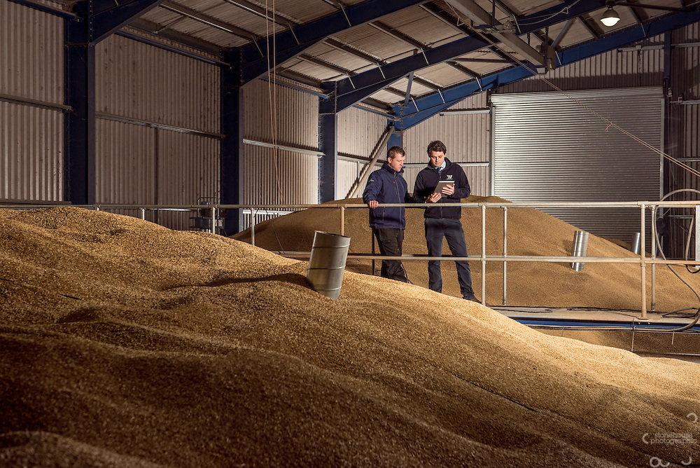 Portrait of Grain buyer and farmer standing above 40,000 tons of grain in one of their storage facilities. This was taken for the annual report and marketing for the animal feed company that buys the grain.<br />