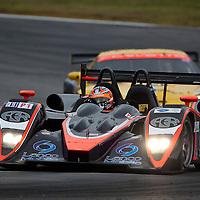 #37 Intersport Racing Lola B06 10 AER: Jon Field, Clint Field