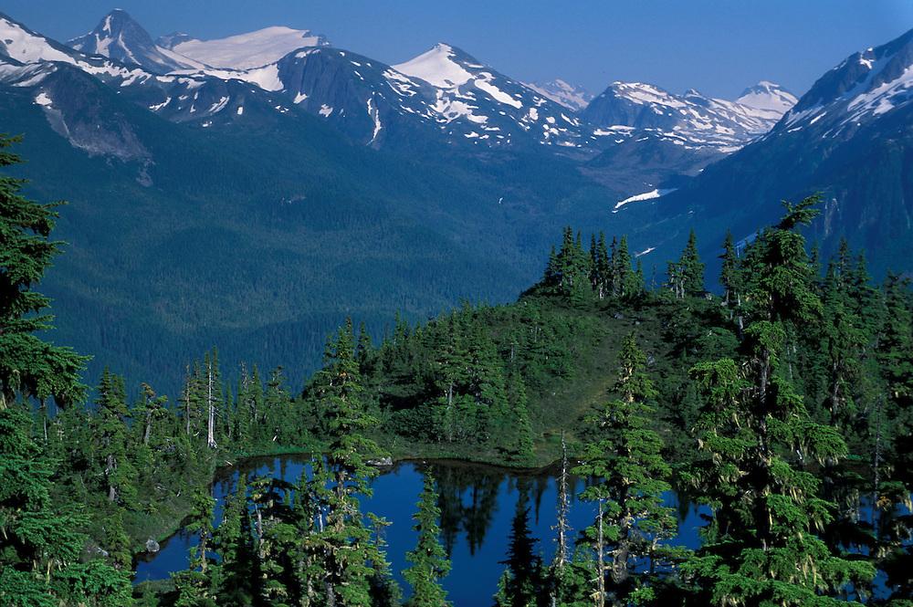 Coast Mountains,.near Bella Coola,.British Columbia, Canada