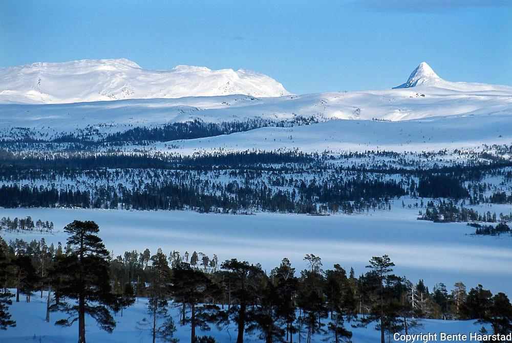 Tjohkele/Lurusneisa.provia F Tjokehle; Lurusneisa, er hellig fjell for samene i Låarte Sijte/Luru reinbeitedistrikt. Tjohkele is a holy mountain for the sami people of Mid-Norway. Ligger midt i nasjonalparken, mellom Sørli og Grssåmoen/Snåsa. 992 moh.