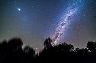 Jupiter at top left, with the diffuse glow of Gegenschein below it around Spica, and the southern Milky Way in Centaurus rising in the east. Carina is at top right, Crux near centre and Alpha and Beta Centauri below Crux. Scorpius is just rising through the gum trees. <br /> <br /> This is a stack of 5 x 3-minute exposures with the filter-modified Canon 5D MkII at ISO 2000 and Rokinon 14mm lens at f/2.5, tracked on the iOptron Sky-Tracker. From Tibuc Gardens, Coonabarabran, Australia.