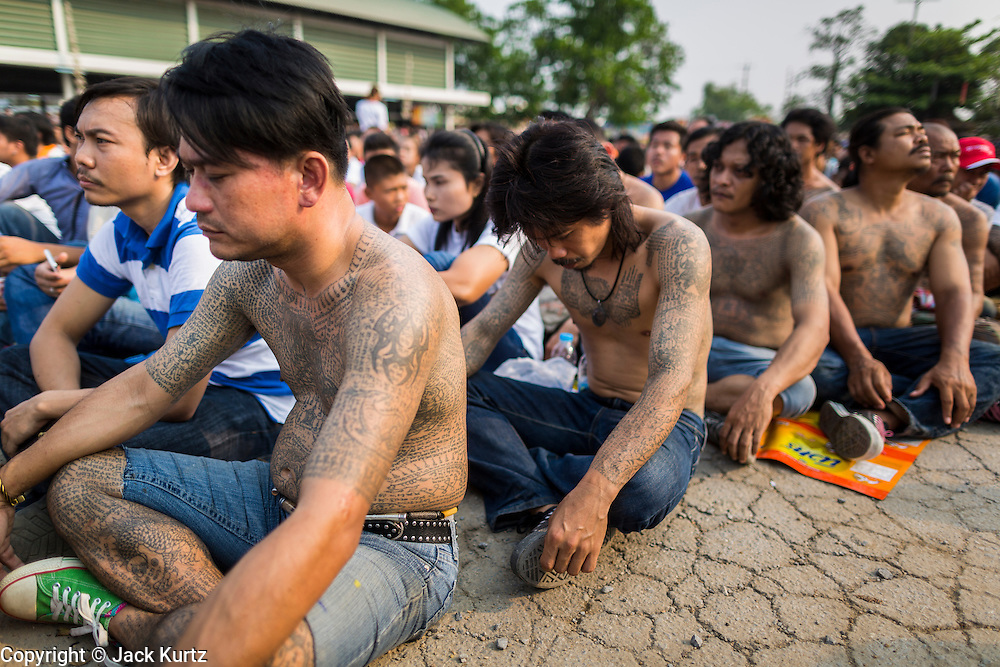 "15 MARCH 2014 - NAKHON CHAI SI, NAKHON PATHOM, THAILAND: Men covered in tattoos pray at the Wat Bang Phra tattoo festival. Wat Bang Phra is the best known ""Sak Yant"" tattoo temple in Thailand. It's located in Nakhon Pathom province, about 40 miles from Bangkok. The tattoos are given with hollow stainless steel needles and are thought to possess magical powers of protection. The tattoos, which are given by Buddhist monks, are popular with soldiers, policeman and gangsters, people who generally live in harm's way. The tattoo must be activated to remain powerful and the annual Wai Khru Ceremony (tattoo festival) at the temple draws thousands of devotees who come to the temple to activate or renew the tattoos. People go into trance like states and then assume the personality of their tattoo, so people with tiger tattoos assume the personality of a tiger, people with monkey tattoos take on the personality of a monkey and so on. In recent years the tattoo festival has become popular with tourists who make the trip to Nakorn Pathom province to see a side of ""exotic"" Thailand.   PHOTO BY JACK KURTZ"