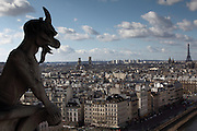 Views of the city of Paris taken from the towers of Notre Dame