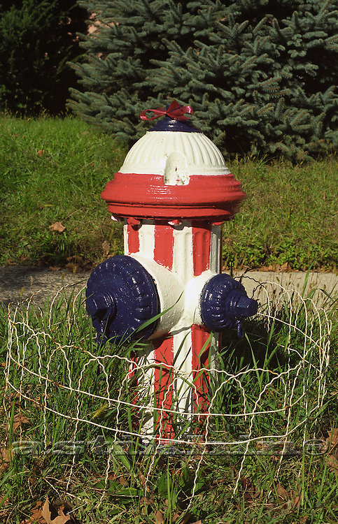 Hydrant with American Flag