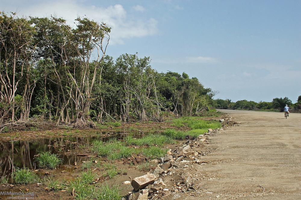 The construction of the Los Micos Beach and Golf Resort has devastated the protected reserve and displaced local Garifuna communities. Garifuna communities, descendants of shipwrecked would-be African slaves, have inhabited most of the Central American Atlantic coast for over 200 years. Since the mid 1990's, mega-tourism projects threaten the continuity of the communities and the UNESCO-declared world heritage Garifuna culture and language as well. Tela, Atlántida, Honduras, July 2008.