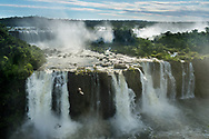 Iguazu Falls with turkey vulture flying above, Cathartes aura, Iguazu National Park, Argentina