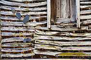 """An wooden house detail pictured in Lazarim during the traditional Celtic carnival """"Caretos"""" in the village of Lazarim, central Portugal on February 17, 2015. PAULO CUNHA /4SEE"""