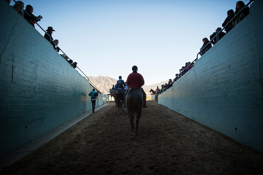 December 26, 2015: Horses walk to the track for the Malibu Stakes at Santa Anita Park, Arcadia CA. Evers/ESW/CSM