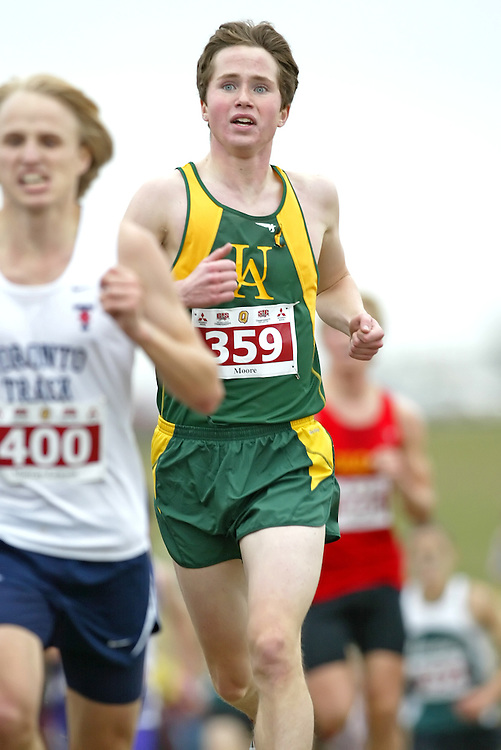 (Kingston, Ontario -- 14 Nov 2009)  HARRY MOORE of the University of Alberta runs to 71 place at the  2009 Canadian Interuniversity Sport CIS Cross Country Championships at Forth Henry Hill in Kingston Ontario. Photograph copyright Sean Burges / Mundo Sport Images, 2009.