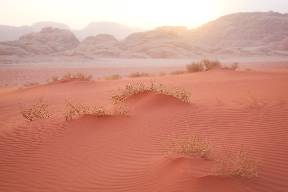The sun sets over windswept red sand dunes and rock cliffs in Wadi Rum, Jordan.