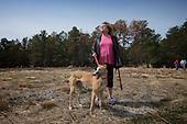 Greyhound Rescue Adoption