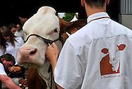 08/05/13 - BESANCON - DOUBS - FRANCE - Concours MONTBELIARD PRESTIGE 2013 - Photo Jerome CHABANNE