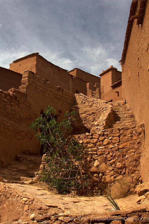 Africa, Morocco, Ourazazate. Ait Ben Haddou path.