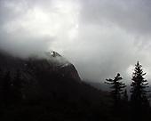 My Yosemite