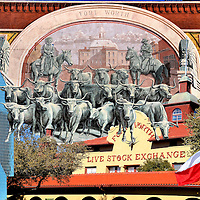 Dallas Fort Worth, Texas Composite of Four Photos<br /> One photo of Dallas is: The 62 story Fountain Place built in 1986. This building was featured in the television show &ldquo;Dallas.&rdquo; Three photos of Fort Worth are: The Chisholm Trail Mural of a longhorn cattle drive in Sundance Square painted by Richard Haas in 1985; The Mission Revival fa&ccedil;ade of the Fort Worth Live Stock Exchange built in 1903; and The Lone Star Flag adopted by the Republic of Texas in 1839.