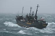 2006 Southern Ocean, Sea Shepherd