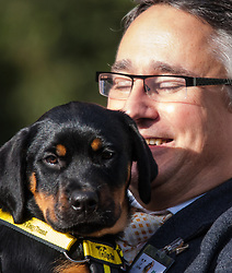 London, October 23rd 2014. Organised by the Dogs Trust and the Kennel Club, politicians  and their pooches gather outside Parliament for the 22nd Westminster Dog of the Year competition, aimed at raising awareness of dog welfare in the UK where the Dogs Trust cares for over 16,000 stray and abandoned dogs annually. PICTURED: Martin Horwood MP poses with George, a Dogs Trust rescue Rottweiler puppy.