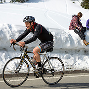 Springtime on Hurricane Ridge, ONP: A bicyclist makes the last push to the top at Hurricane Ridge on a gorgeous da— a 17 mile ride from the bottom—as snowboarders relax after their run down the spring snow.