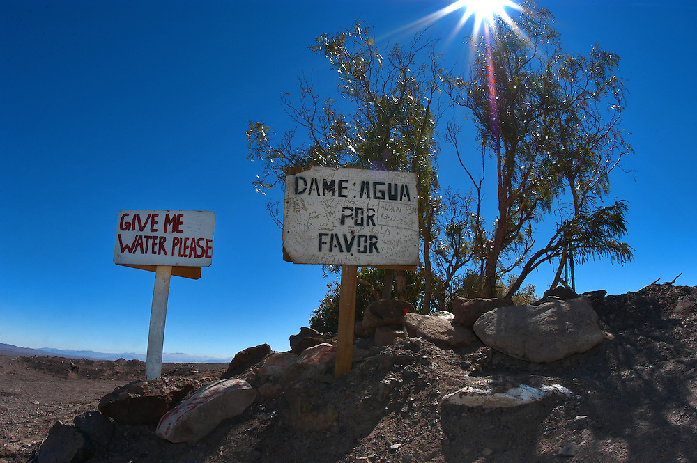"""Atacama Desert - Chile. Signs saying """"give me water please"""" plead for passersby to water plant on roadside in the desert near San Pedro de Atacama, one the world's most arid regions."""