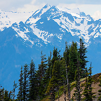 Closeup of the Olympic Mountains - Olympic National Park, WA