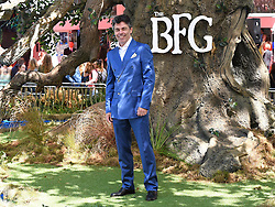 The BFG Premiere held at Leicester Square Gardens, Leicester Square, London on Sunday 17 July 2016