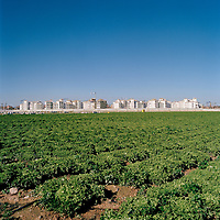 Murcia, Spain. From a story on the explosion of controversial golf resorts in Spain's arid south-east. These walled developments are often built on former farming land when farmers sell their land to the big developers. Most of these new houses are sold to foreign buyers as holiday homes..Photo shows the Polaris World La Torre Golf Resort which is under construction in Murcia, Spain..Photo©Steve Forrest/Amaya Roman/