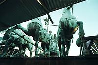 08 JAN 2001, BERLIN/GERMANY:<br /> Quadriga auf dem Brandenburger Tor, waehrend der Restaurierung von Wellblechdaechern umgeben<br /> IMAGE: 20010108-01/01-04<br /> KEYWORDS: Architektur