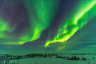 Parallel curtains of aurora as a display starts up at the Churchill Northern Studies Centre, Churchill, Manitoba. With the 20mm Sigma lens.