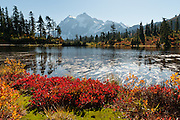 Mount Shuksan (9127 feet elevation) is in North Cascades National Park, Washington, USA. Picture Lake is in Heather Meadows, Mount Baker - Snoqualmie National Forest.