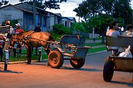 Hanging out with horses in San Cayetano, Pinar del Rio, Cuba.