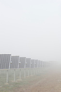 Winter foggy morning.<br />