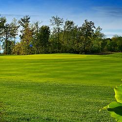 Golf Metropolitain Anjou, vert et approche no. 1