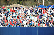 Ole Miss students throw drinks in the air after Ole Miss' Sikes Orvis (24) hits a three run home runs vs. Georgia State at Oxford-University Stadium in Oxford, Miss. on Saturday, February 22, 2014. (AP Photo/Oxford Eagle, Bruce Newman)