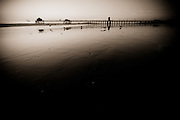 Seagulls are silhouetted in front of the pier at Huntington Beach, California, USA.