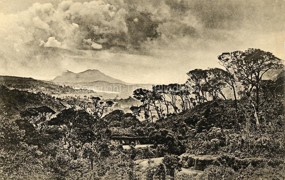 Old Postcard. Nuwara Eliya