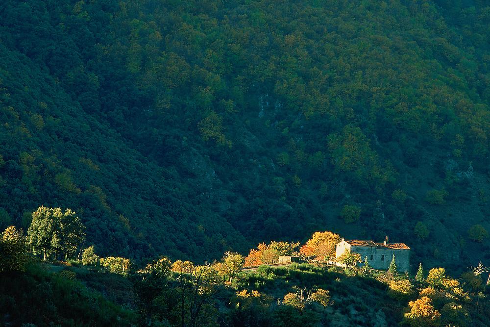 France, Languedoc Roussillon, Gard, Cevennes, région de Saint-Martial