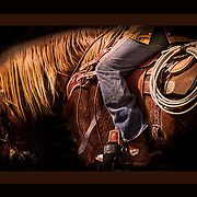 NEW Works by Craig W. Cutler Photography / DesignLIFE. <br />