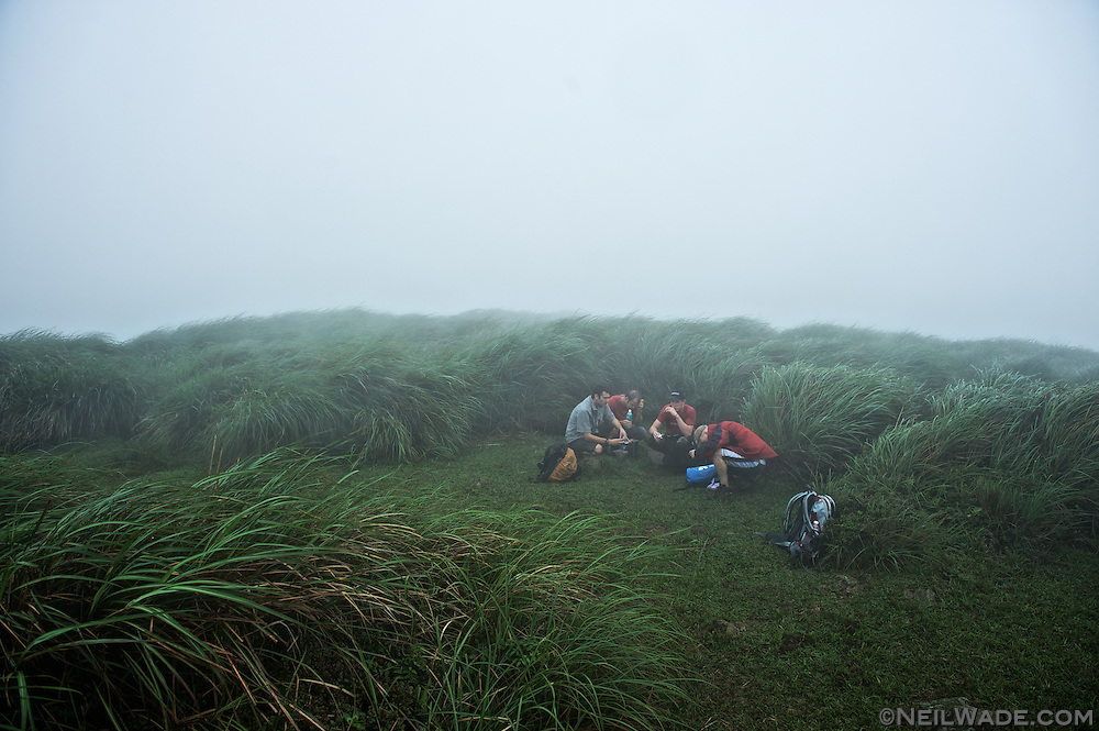 A group of hikers take shelter near some tall grass in Yangming Shan National Park in Taipei, Taiwan.