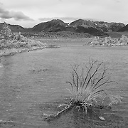 Mono Lake Reclaimed Shore - Incoming Storm - Black & White