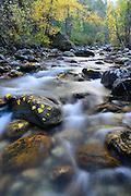 Kootenai Creek in Autumn, Bitterroot National Forest, Montana