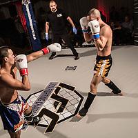 Lion Fight Championship