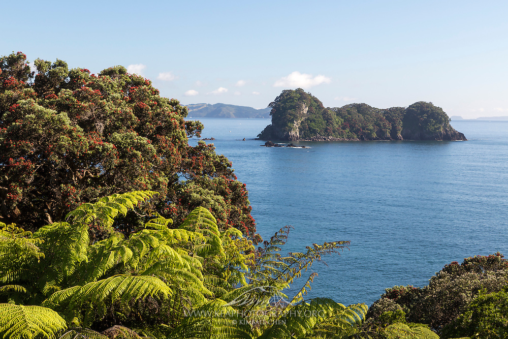 Along the track down to Cathedral Cove, lies Motueka Island and other small islands covered with green ferns and red rata flowers.  Coromandel, New Zealand