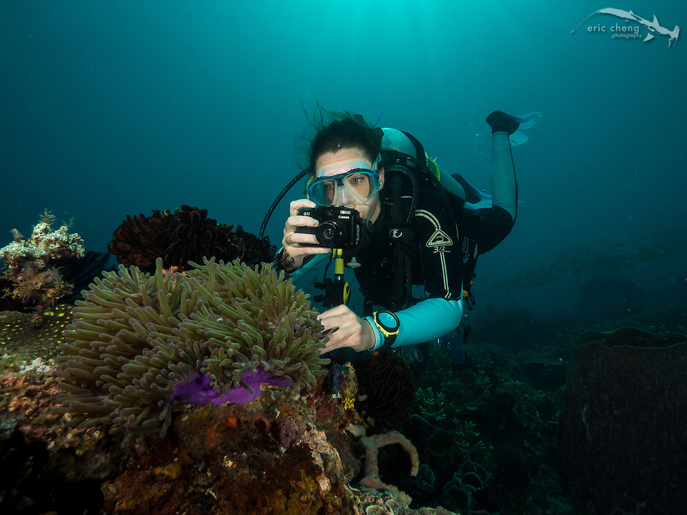 Scuba diver Phoebe Chadwick uses a flooded Canon G11 digital camera, underwater. Cannibal Rock, Horseshoe Bay, Komodo National Park, Indonesia.