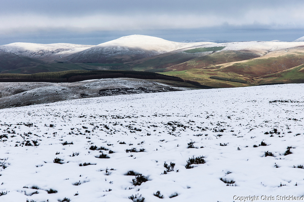 Mozie Law, Cheviot Hills, Anglo Scot Border, UK. 13th December 2015. Snow on the Cheviot Hills looking into Bowmont Valley from the Cheviot Mozie Law (552m).