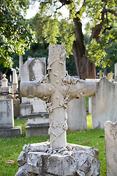 cross in a cemetery found in South Carolina