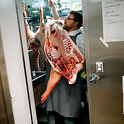 SHOT 8/14/13 5:56:01 PM - Justin Brunson, Owner and Executive Chef at Old Major lifts half a hog onto his shoulder in the walk-in at the restaurant in Denver, Co. The pigs are raised locally in Brush, Co. and Brunson buys two a week that he then butchers in-house and uses the entire hog in various dishes in the restaurant. The restaurant focuses on heritage-raised meats from Colorado farms, features an in-house butchery program and bills itself as contemporary farmhouse cuisine. (Photo by Marc Piscotty / © 2013)
